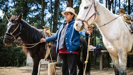 Zelda Ramírez with her horses